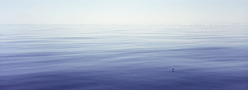 Calm sea image fine art print