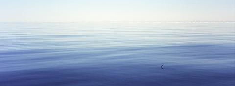 Calm at sea off the coast of Northeast Greenland